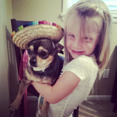 dog in a sombrero